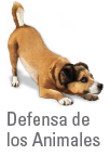 Defensa de los animales